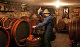 Tradition of wine making in Serbia